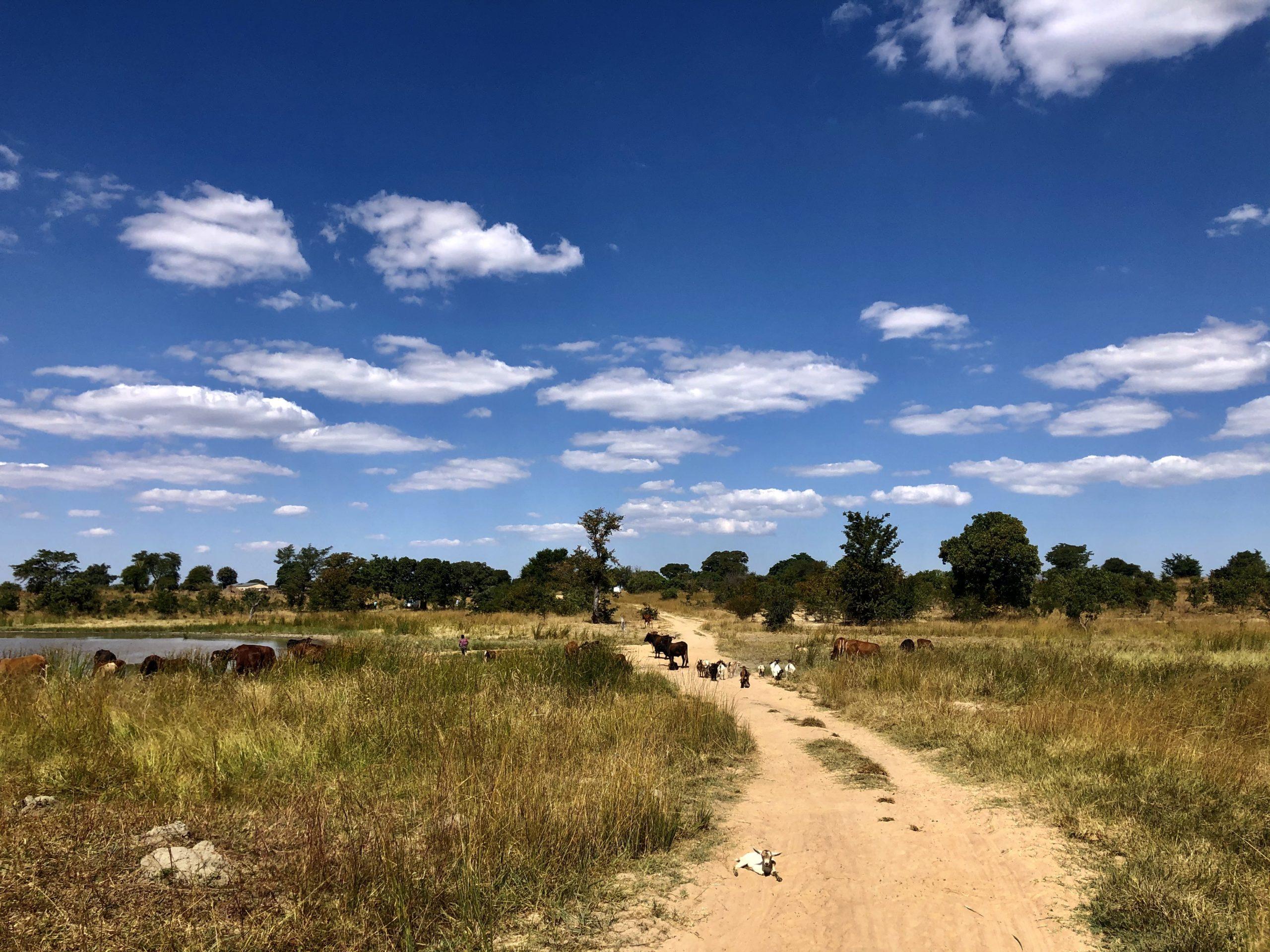 On Call Africa Kanyanga Community